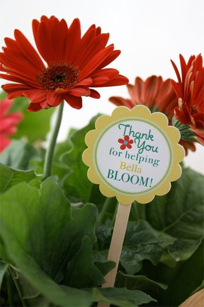 """Adorable free printable: """"Thank you for helping {insert name} BLOOM!"""" Put pick in a pot of flowers and you're good to go..."""