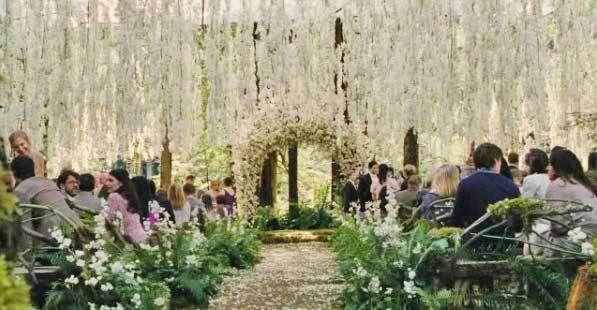 Breaking Dawn Gallery Breaking Dawn Wedding Twilight Wedding Wedding Scene