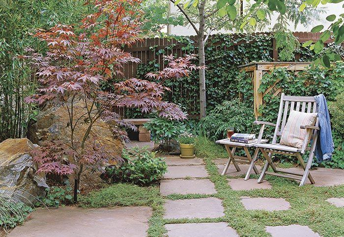 Like The Small Japanese Maple Paving Stones Vine On