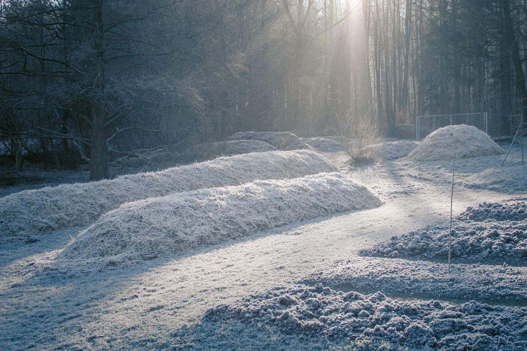 dr hauschka herb garden in the winter dr hauschka biodynamic