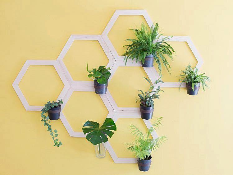 Pflanzenwand Selber Bauen diy anleitung pflanzenwand in wabenform bauen via dawanda com diy