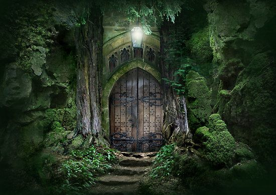 ♥§• Magic Door •§♥§• | Mystical forest, Fairy houses, Enchanted ...