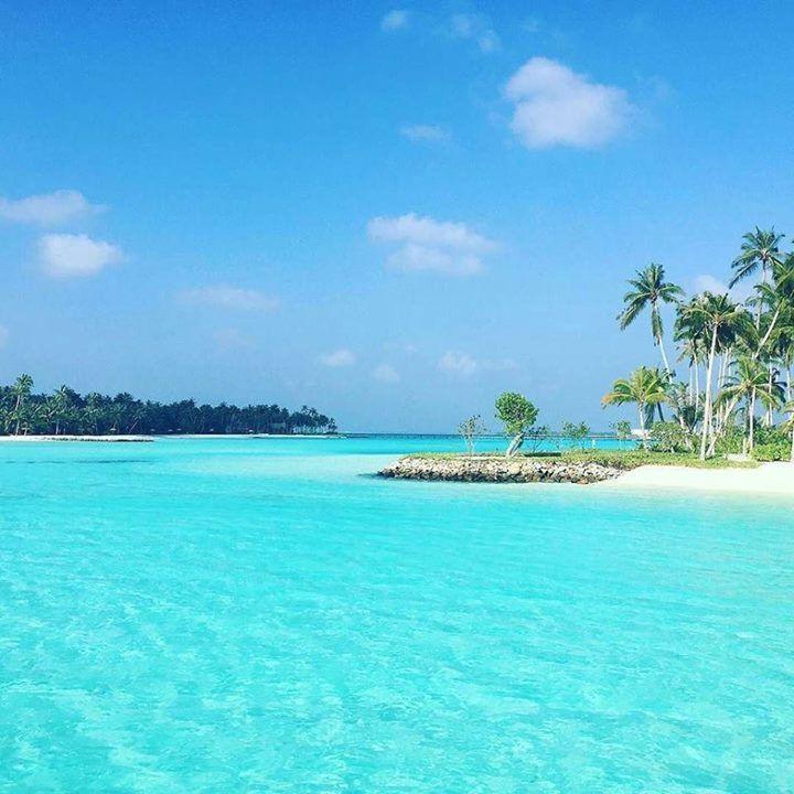 Regram from @lunaracampos - Como pode Deus ser tão perfeito em suas criações ! #TksGod #nature #maldives #ilhasmal https://t.co/msSa2yaSck (via Twitter http://twitter.com/maldivesinpics/status/691656683471400963) - http://ift.tt/1HQJd81