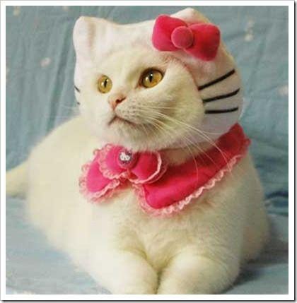 hello-kitty-cat-costume-1