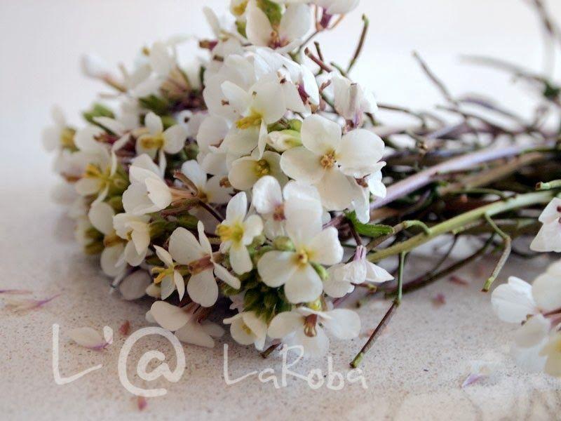LaRoba: Un ramito de flores silvestres.