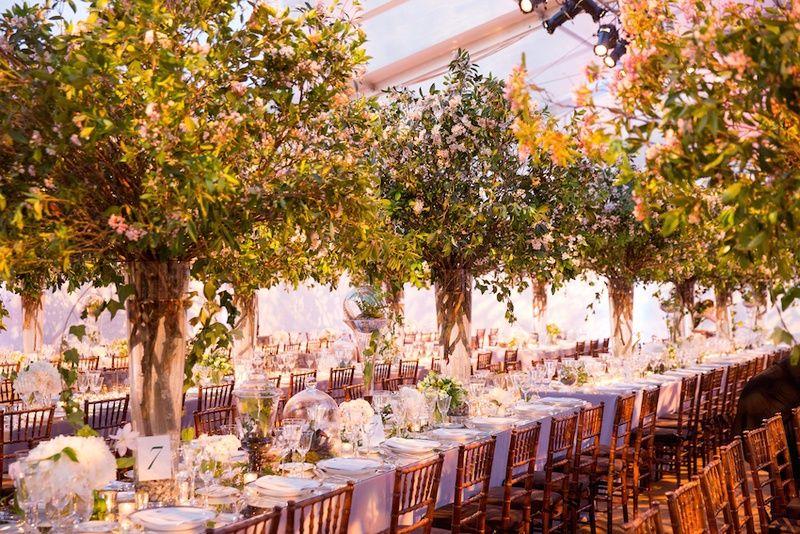Indoor Garden Wedding Decor Photography Roey Yohai Read More