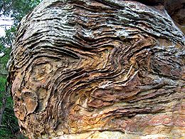 Swirling bands of iron deposits in sandstone.