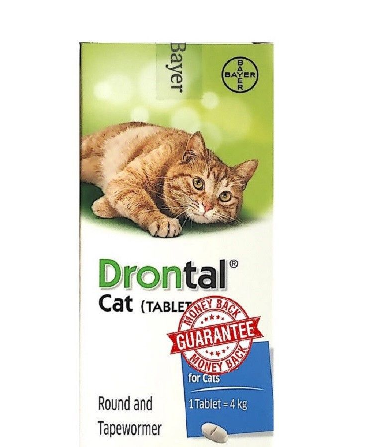 Dr Bill S Feline Complete Joint Care Pet Supplement Advanced Hip And Joint Supplement For Cats Supplement F Pet Supplements Joint Care Dog Supplies Online