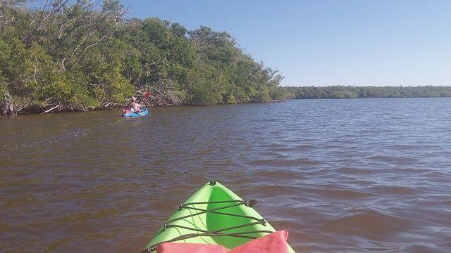 Paddle Everglades, Everglades City, 10000 Islands - Kayak, Canoe
