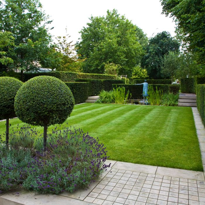 Clipped hedges lawn border by stone lavender under for Topiary garden designs