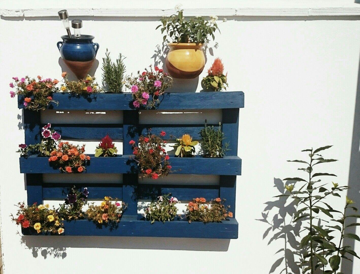jardn vertical en terraza con palets