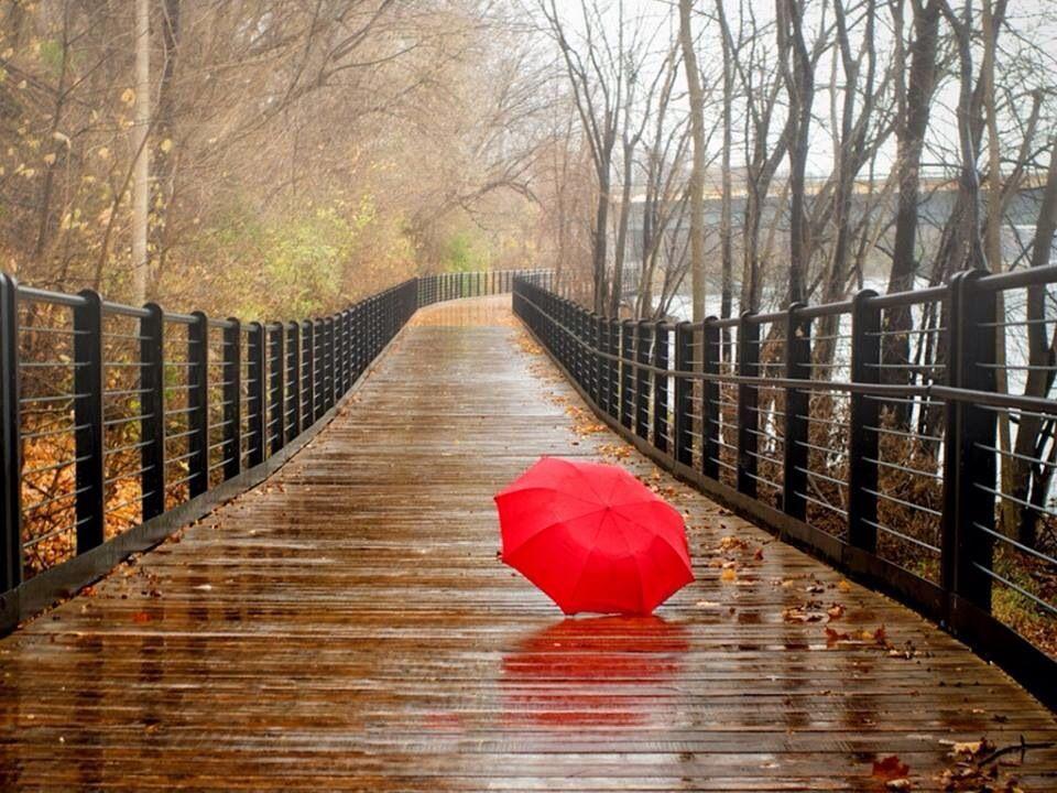 34de68c5b1fb025e9070c52553f2f374 Jpg 960 720 Pixeles Rainy Day Pictures Rainy Day Wallpaper Rainy Day Photography
