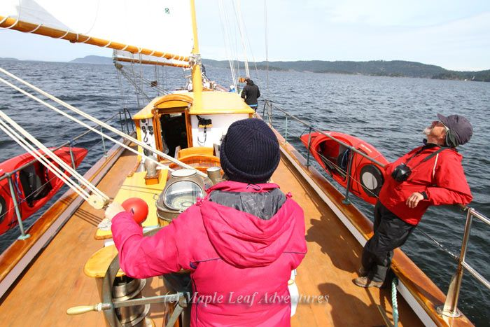 Sailing in spring in the Gulf Islands, BC
