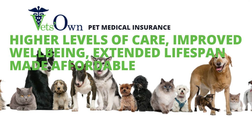 Vets Own Pet Medical Insurance Vets Own Is The Newest And Most Innovative Pet Medical Insurance Product In South Africa It Is Designed Pets Vets Healthy Pets