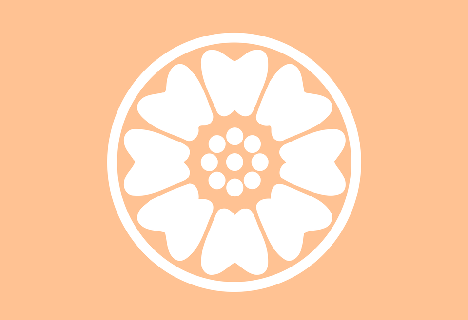 Order Of The White Lotus Flag As Seen In Avatar The Last Airbender Vexillology The Last Airbender White Lotus Avatar