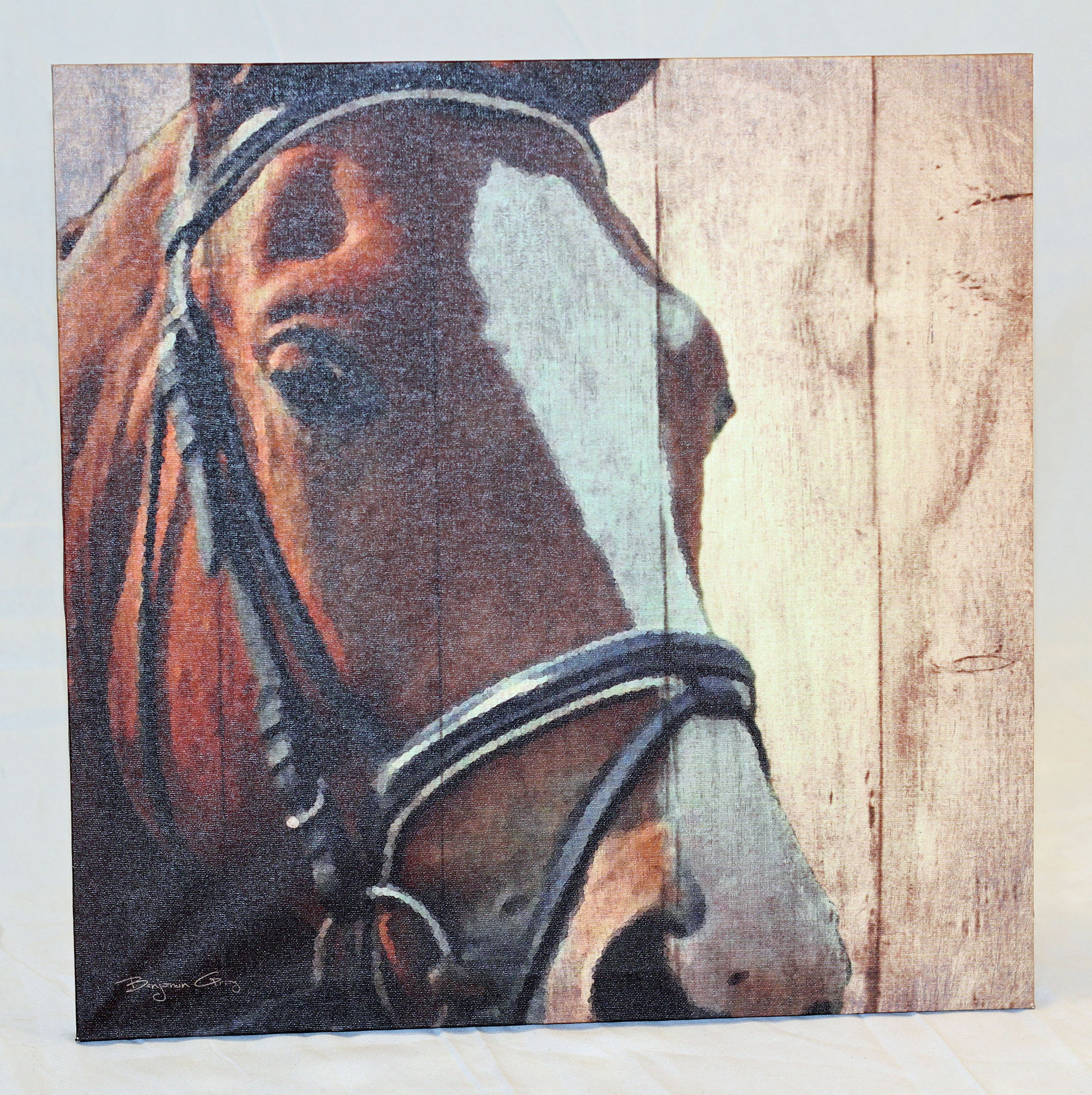 Horse Canvas 2