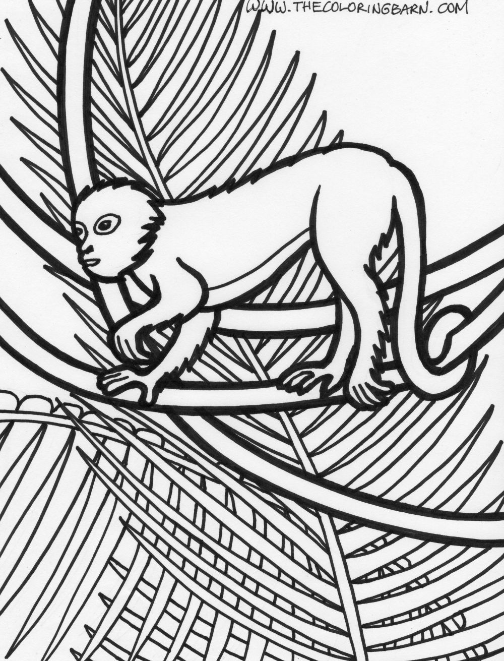 Rainforest Plants Coloring Pages | page rainforest monkey coloring ...
