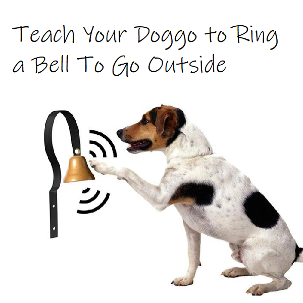 Train Your Dog To Use A Bell When Asking To Go Outside Add This