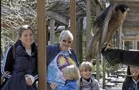 Grandparents Photo Series: Breakfast with the Birds New York, NY #Kids #Events