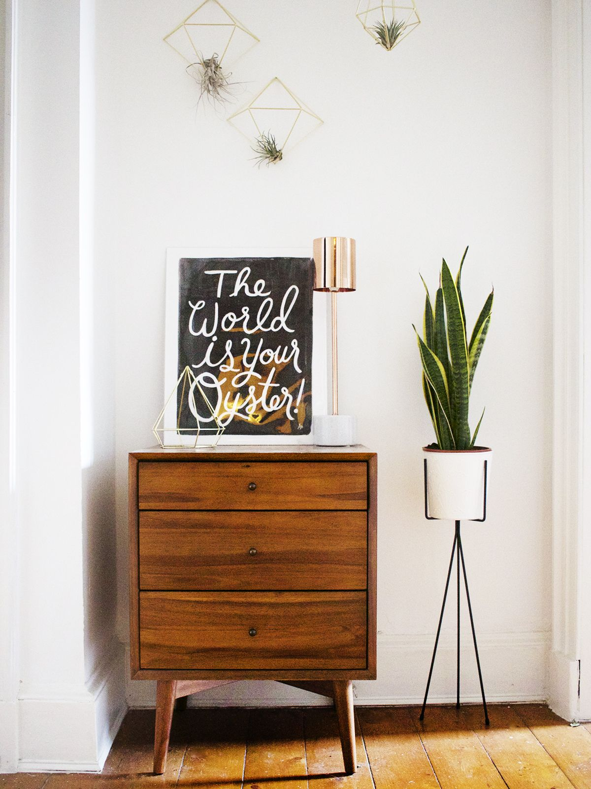 Creative houseplants in a midcentury inspired hallway by kate