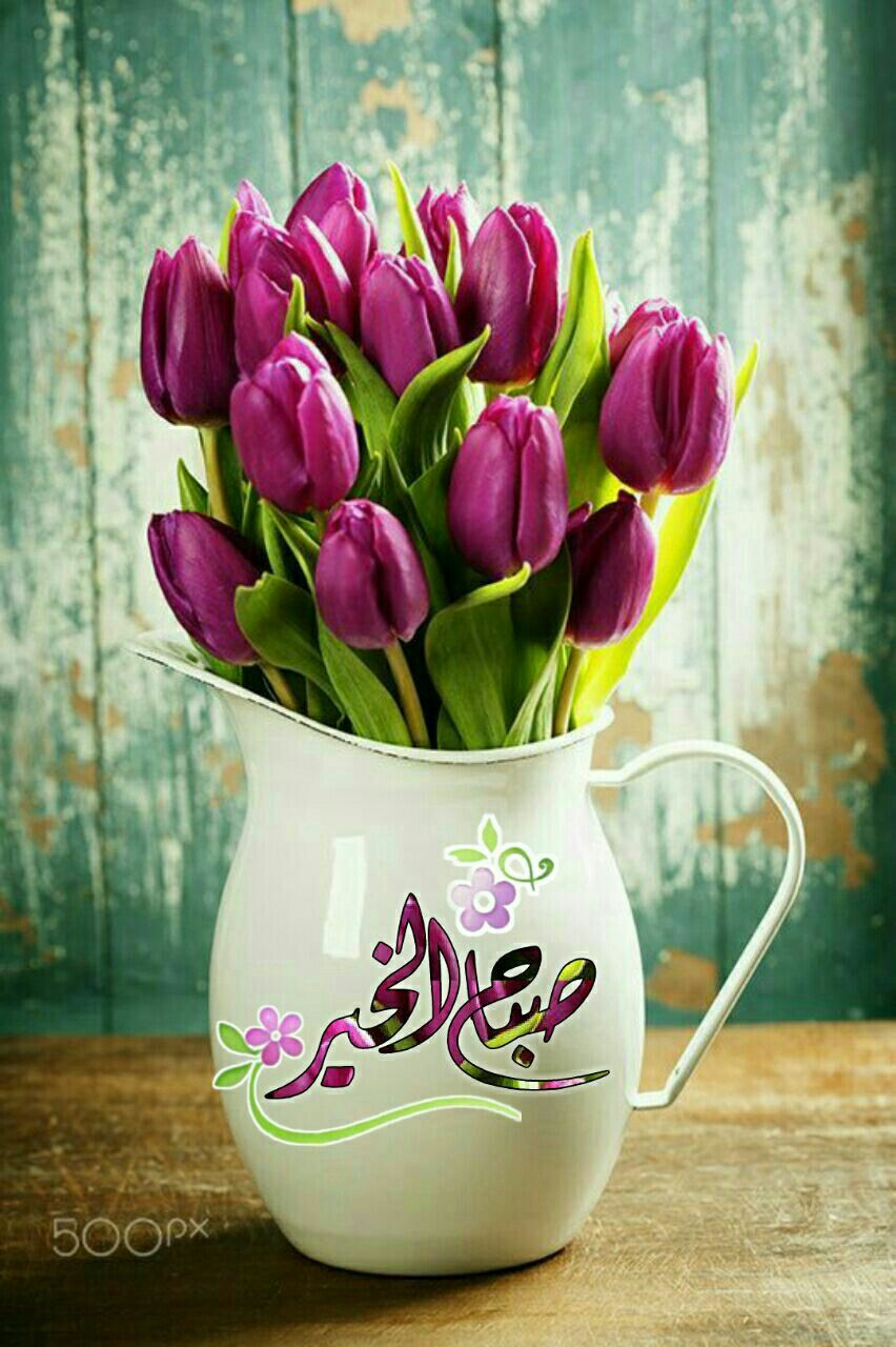صباح الخير Beautiful Morning Messages Good Morning Arabic Good Morning Greetings