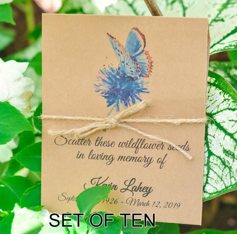 Funeral favor butterfly memorial seeds funeral celebration