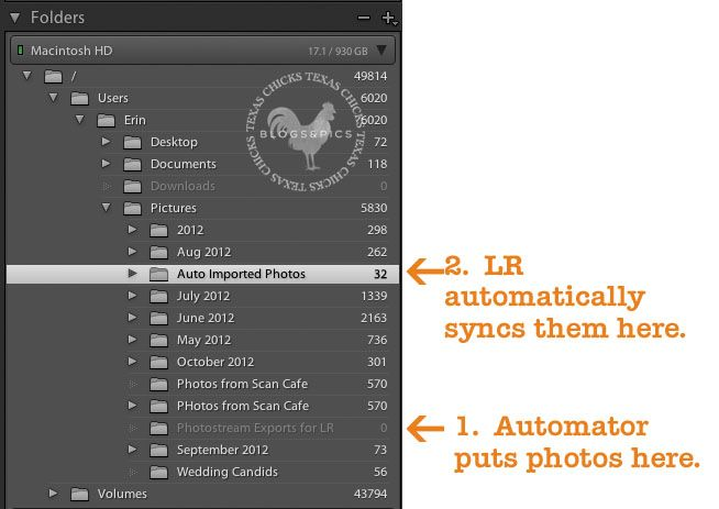 Lightroom edit in photoshop grayed out