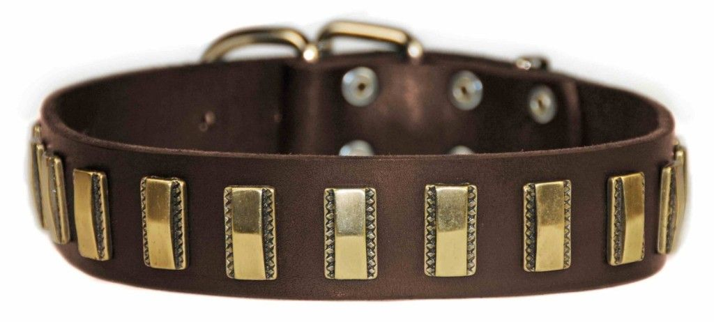 Fashion for all Shapes and Sizes – French and English Bulldog Clothing and Accessories