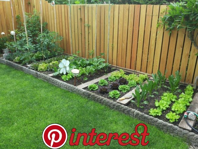 40 Amazing Privacy Fence Ideas To Perfect Your Backyard 40 Amazing Privacy Fence Ideas T… | Home Vegetable Garden Design, Shed Landscaping, Backyard Garden Design