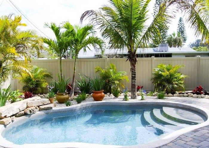 Backyard swimming pool decoration with tropical plants for Flowers around swimming pool