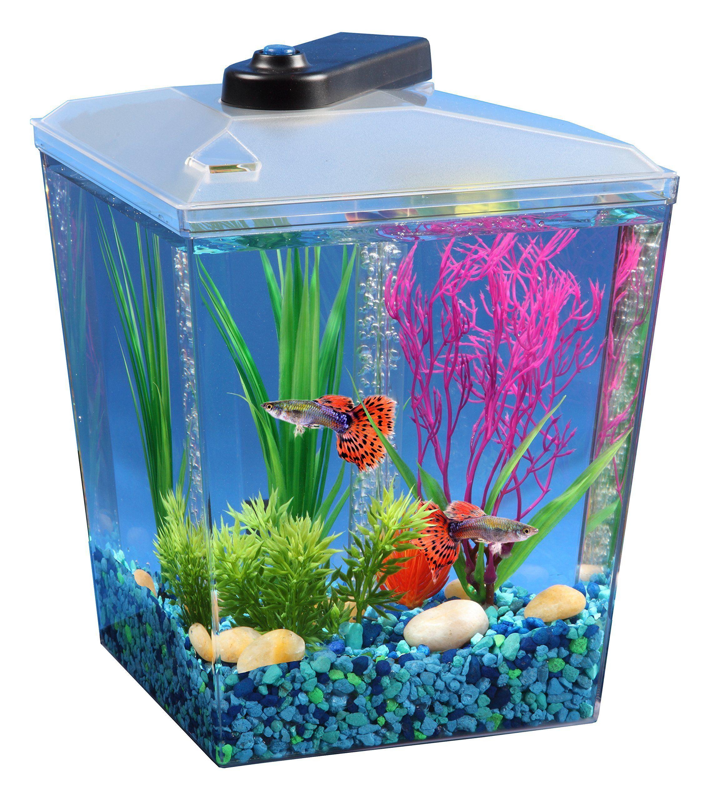 Api 1 Gallon Corner View Fish Aquarium With Under Gravel