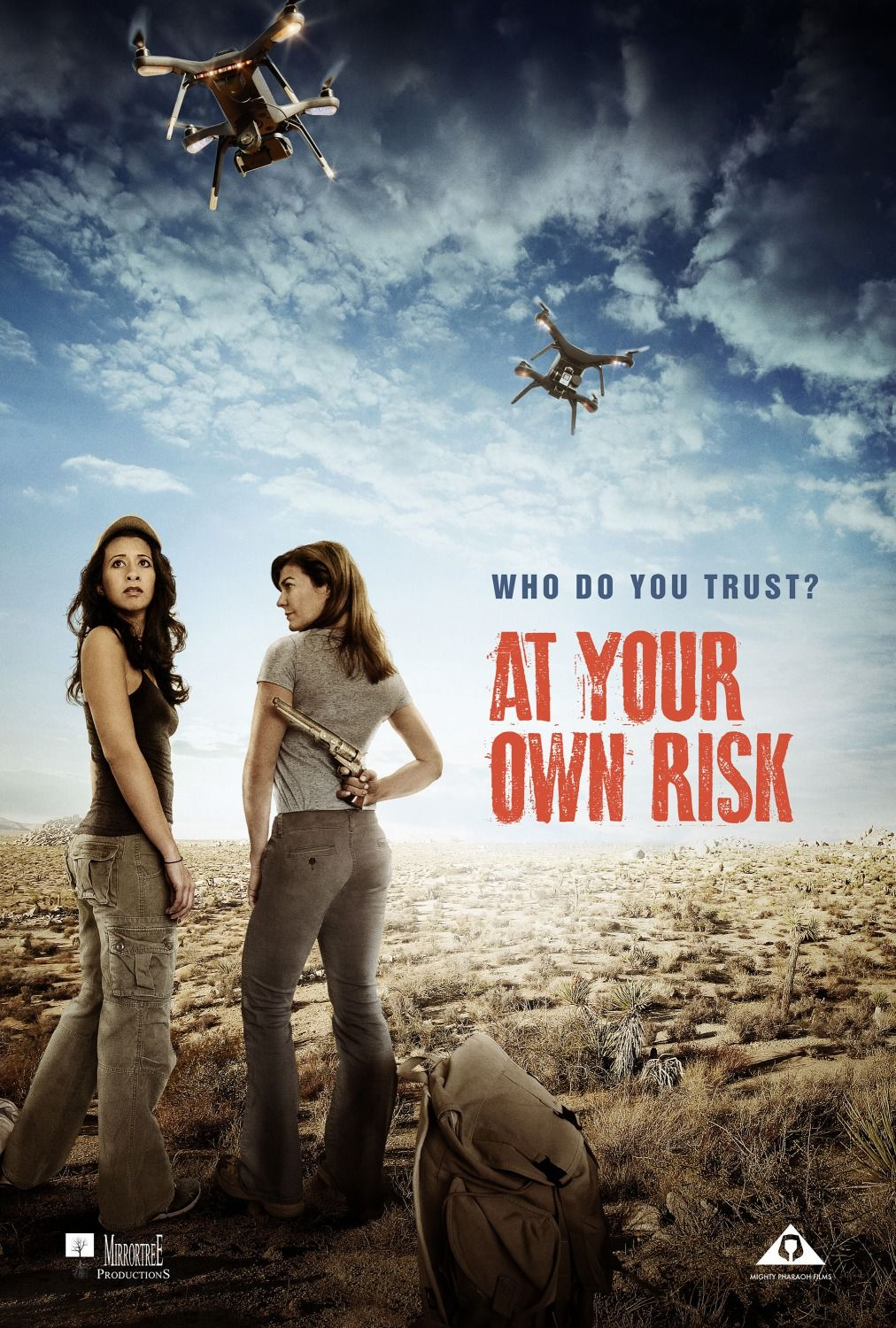 At Your Own Risk 3 movie posters https//teasertrailer