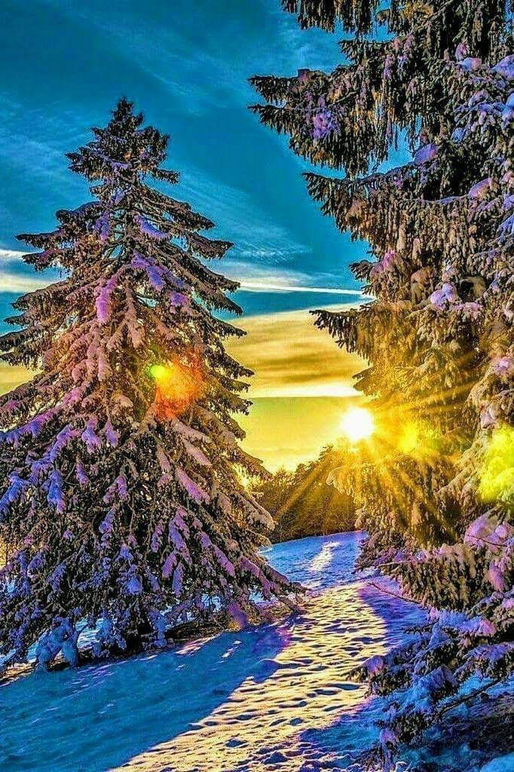 Winter. Gott ist so kreativ.?