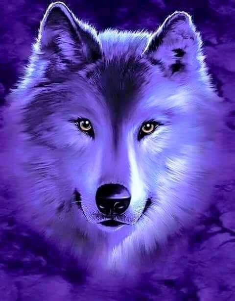 картинки сверкающих волков двигаться