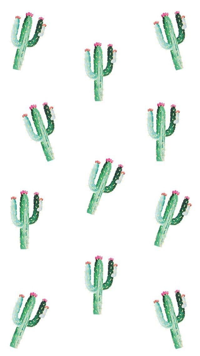 Illustrated cactus watercolor wallpaper