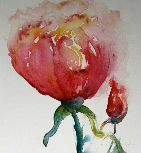 Aprils Rose of Love  original watercolor 7x10 by CheyAnneSexton