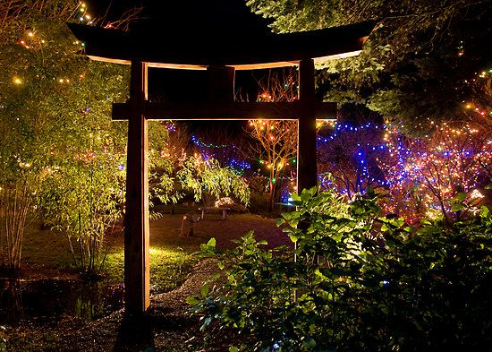 Japanese Garden At Night garden & landscaping, mesmerizing japanese garden christmas lights