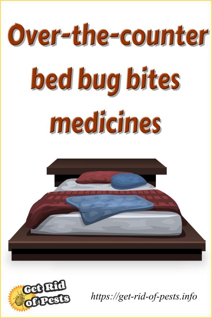 Can Bed Bugs Live In Your Clothes What To Do With Bedbugs