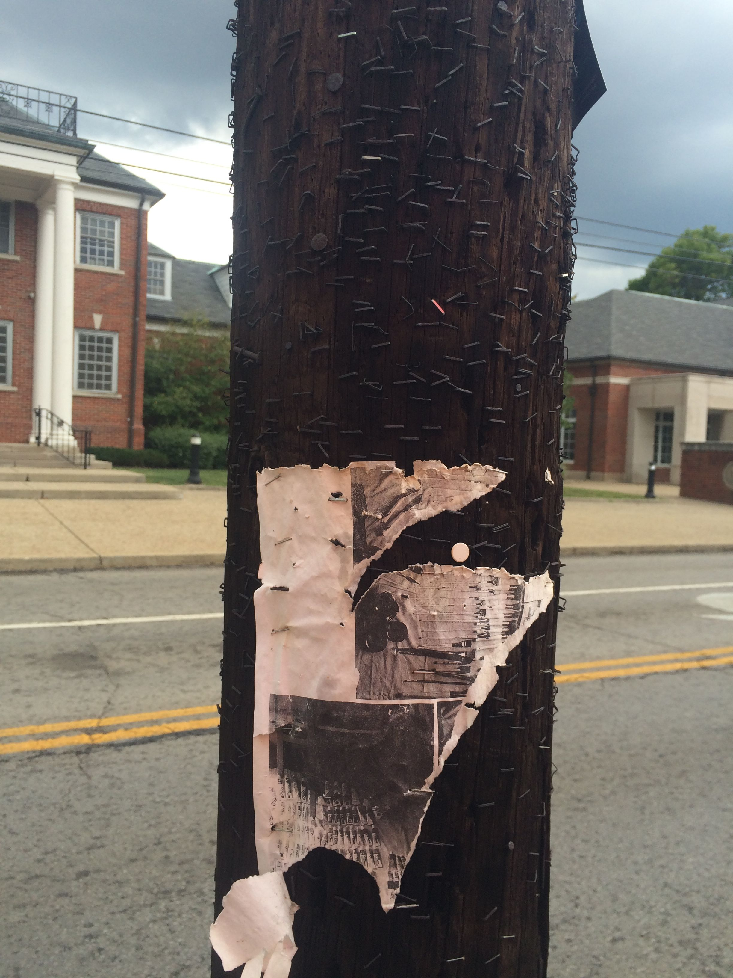 "The walk from Champions Court back to my dorm, Woodland Glen 3, is quite the trek. I just so happened to look at this telephone pole and notice that there were a ton of little nails and staples on it. What has been posted here? Was it people selling things or looking for lost items? What ""community"" has left their mark here?"