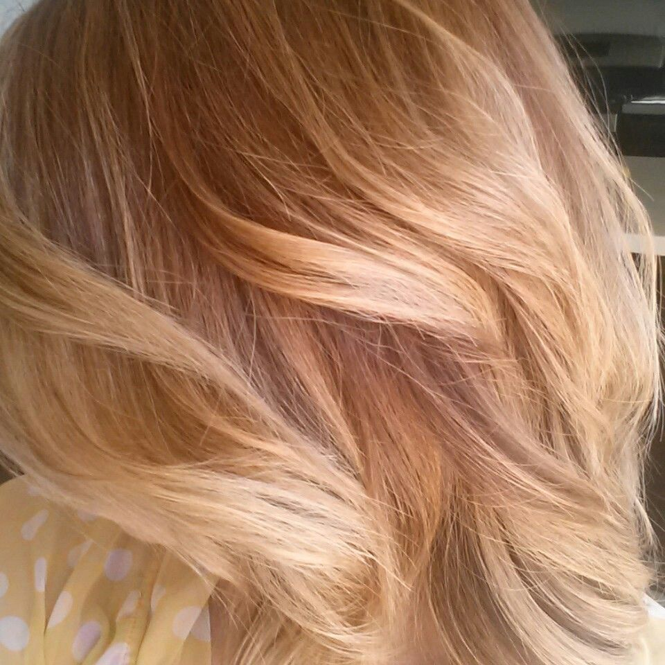 Copper To Warm Honey Blonde Ombre Melt Bayalaye Gorgeoushair Fallhair