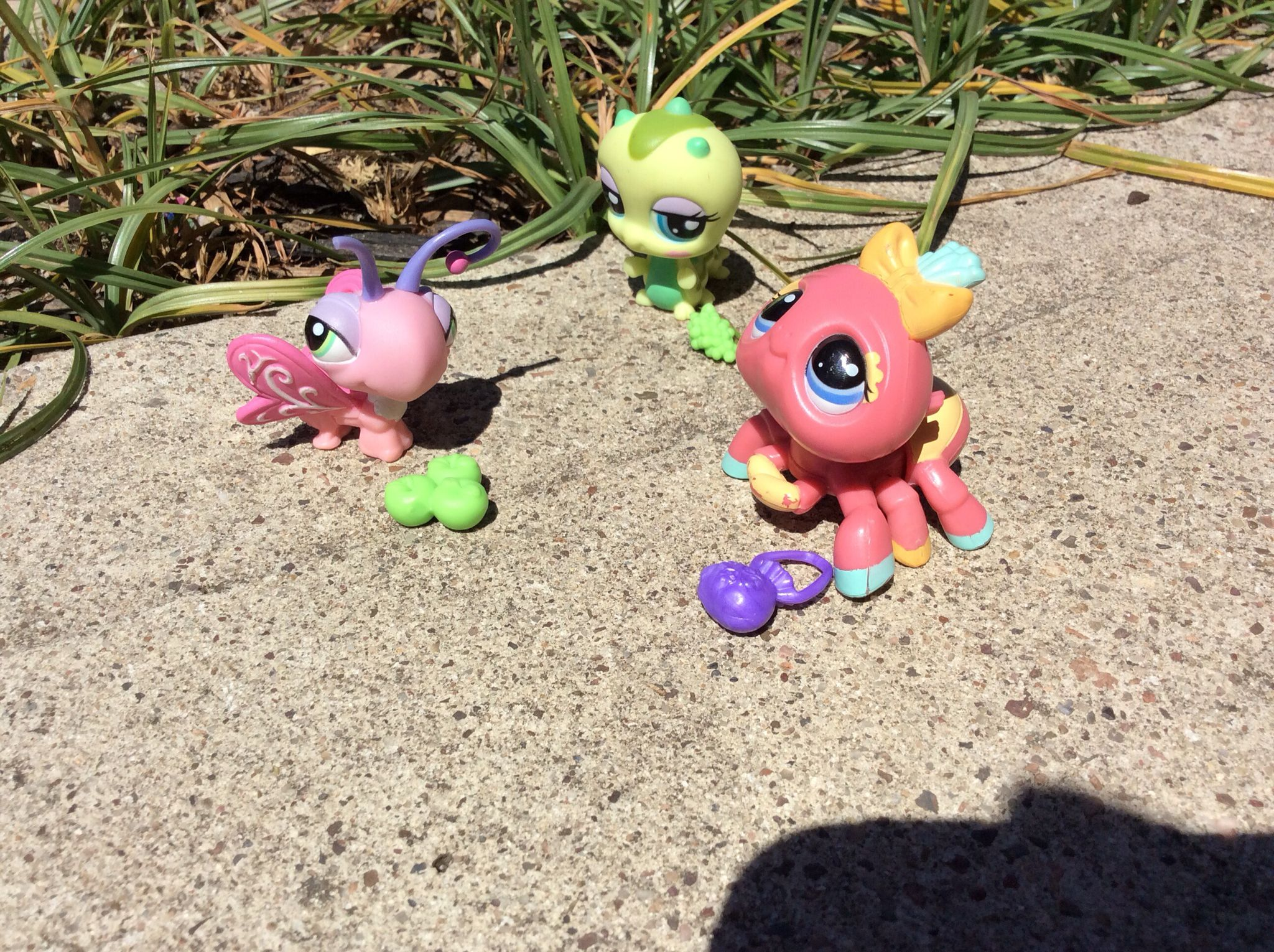 My LPS collection | Christmas ornaments, Ornaments, Christmas
