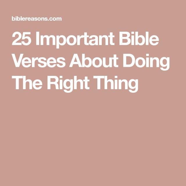 Pin On Scriptures Quotes