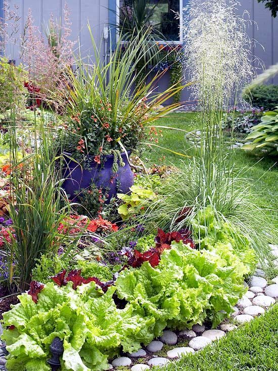 22 ideas for decorative gardens - pleasure for the eyes and palate ...