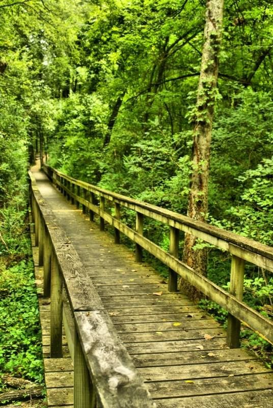Check out this darling spots in Mississippi! Top 5 lisited