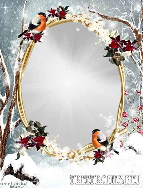 Free Photoshop Frames Free Winter Frame For Photoshop Winter