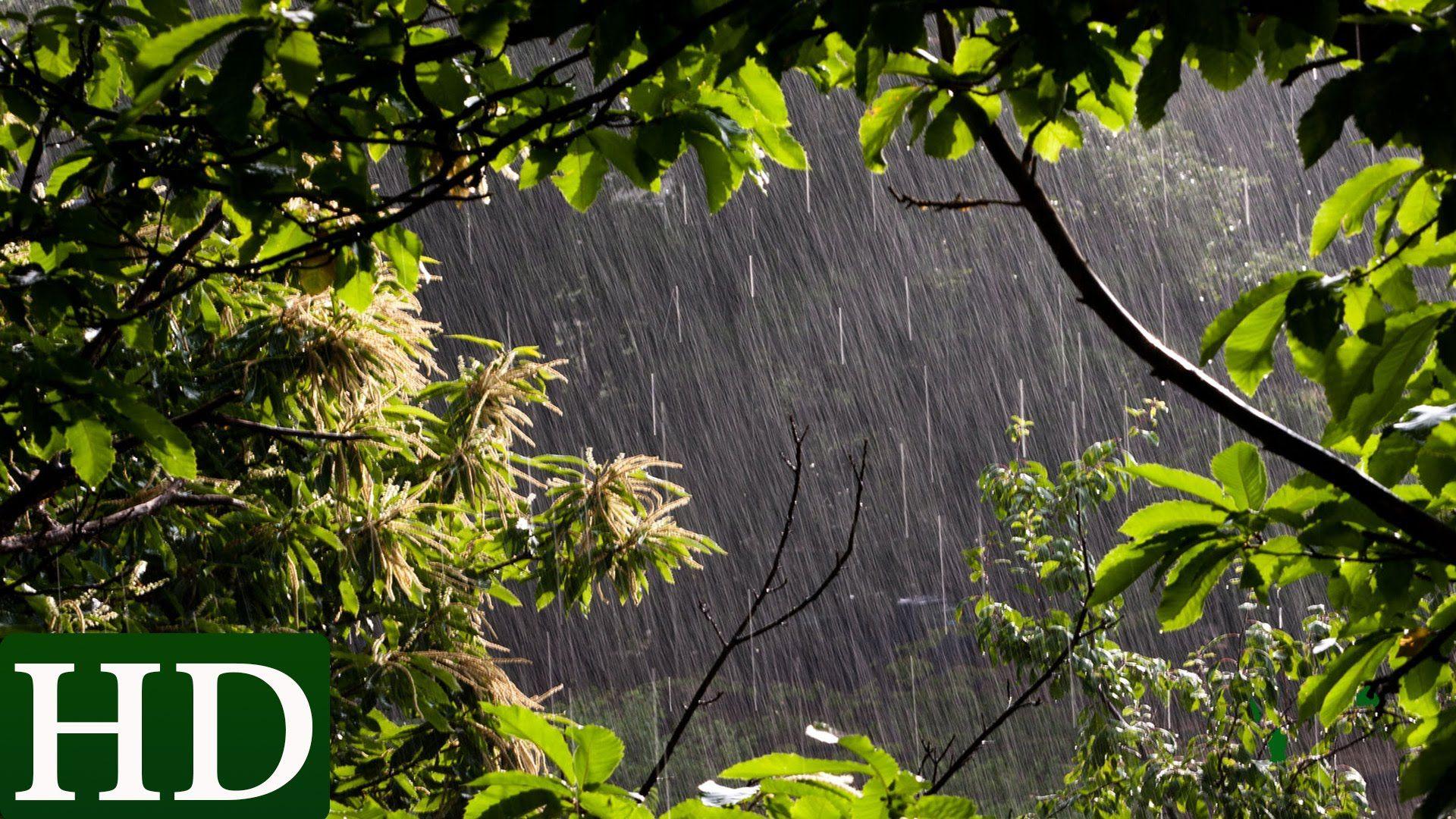 pluie bruit de la pluie et nature relaxation musiques music bruit de la pluie pluie. Black Bedroom Furniture Sets. Home Design Ideas