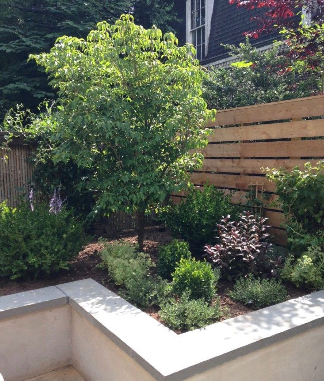 Raised Bed Retaining Wall: Pin By Catherine Sedwick On Backyard In 2019
