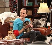 Sheldon Cooper with his cats!