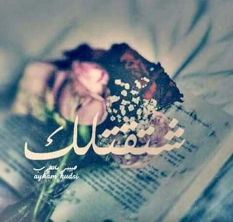 i miss you | ♡ A r a b i C | Arabic love quotes, Love words