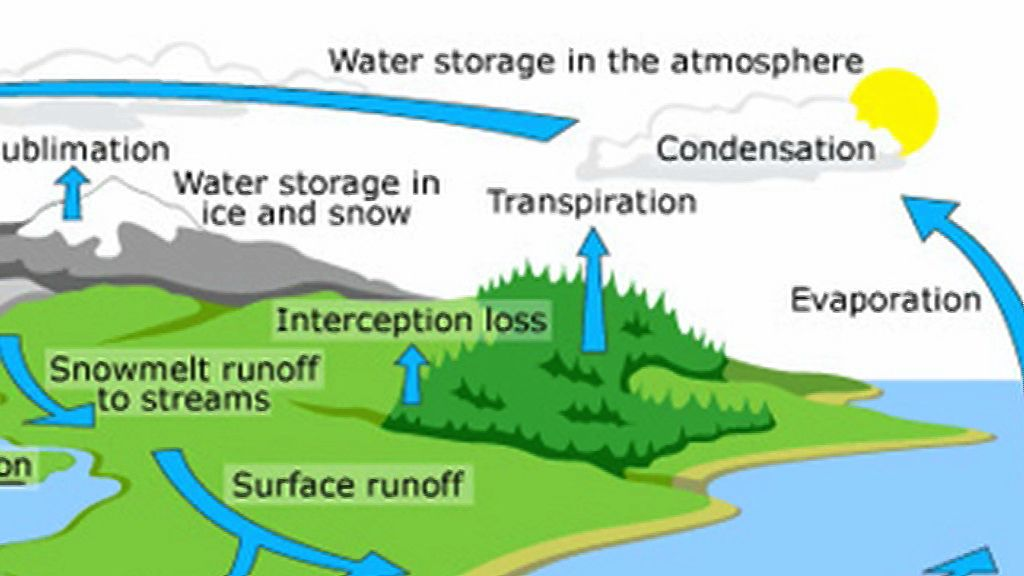 Dynamic water cycle video 233 science yr8 pinterest cycling dynamic water cycle video 233 ccuart Images